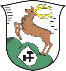 feuerwehr-holzhausen.com